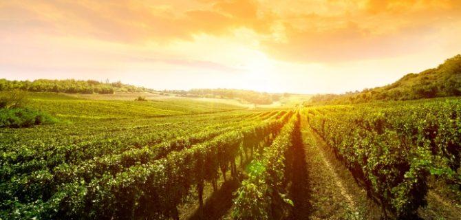 La Rioja accesible deja Huella